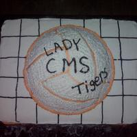 Volleyball This cake was done for a girls volleyball team.