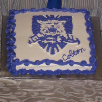 Weber State University This is my son's 19th birthday cake. He asked for his school mascot on his cake. It is hand drawn in buttercream. The actual color was...