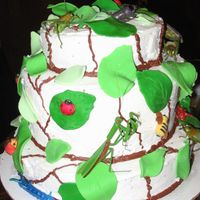 Bug Cake I did this for a friends 2 year old that loves bugs