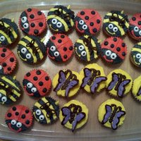 Lady Bugs, Bumble Bees, Butterflies Bugs made for a birthday party at school
