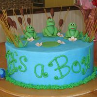 "Froggies And Turtles Theme for the nursery was ""pond life"". Thanks to many on this website for sharing ideas."