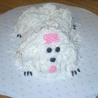 Minipuppy Cake  This is my minipuppy cake made from Little Debbies cakes and frosted with whipped buttercream. I had fun doing this, and gave it to my...
