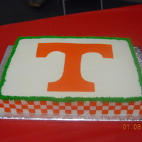 Ut Groom's Cake butter cream with lots (and lots) of fondant squares