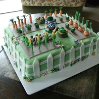 Garden Cake To My Son's 40 Years Birthday.