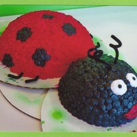 Lady Bug  This was for a girl at work who loves lady bugs! For this i used the half ball pan for the lower half and the mini ball pan for the head....