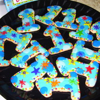 1St Bd Cookies NFSC with color flo for Grandsons !st BD. Made to match partyware