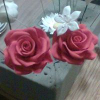 Gum Paste Roses  Gum paste roses that I made. The picture doesn't show how red they are. I think I need to play around with the petals so they don&#039...