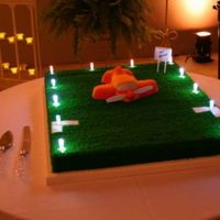 "Weakley Field Lit This cake was for a couple who live in a ""Fly-in Community"". Bob Kier built the frame and wired the lights; Linda, his wife,..."