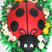 Ladybug I decorated this cake with fondant and Royal Icing flowers. I enjoyed doing it.