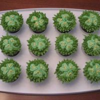 St Pattys Cupcakes   Here are some clover is the grass cupcakes I did. I used a star tip to make it look like grass.