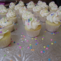 Mini Cupcakes just got my M1 tip, L-O-V-E IT!!!! First time, I think it went well! French vanilla cake, buttercream icing