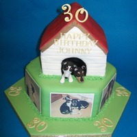 Dog Kennel Birthday Cake Chocolate cake and lemon sponge, fondant covered withedible photos. Dogsfrom sugar-paste