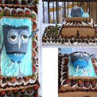 Owl Grooms Cake Collage