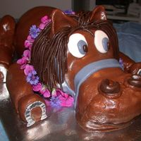 Luau Horse Cake I made this cake for an equine veterinarian's going away party, sending him on his way to Hawaii (hence the lei on the horse). This...