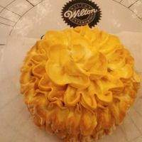 Wmi Demo Day @ Michaels Got this inspiration from one of the dresses i did on my Southern Belle Doll Cakes.
