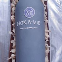 6-8-09_Bottle.jpg this was made for a mona vie tasting party a friend of mine held