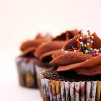 Chocolate Mocha Cupcake Chocolate cake, chocolate buttercream frosting with espresso