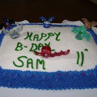 Bakugan B-Day Cake For My Son white sheet cake with vanilla buttercream frosting,with Bakugan figurines.My son LOVES Bakugan!!! This was my 1 st sheet cake.Comments...