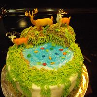 Birthday Cake For Hunter.. chocolate cake with buttercream icing. the deer are plastic.