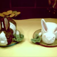 Two Little Bunnies   my darling daughters birthday cake =carved and fondant covered