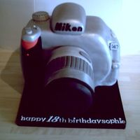Nikon Camera Carved, fondant covered and painted silver