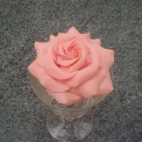 My 2Nd Rose :) This is my second attempt at a sugar rose , made with sugar florist paste. I am extreemly happy with it