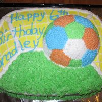 Soccer Birthday Cake This was a single layer 1/2 yellow, 1/2 funfetti cake with strawberry soccer ball. All icing was buttercream. This was the second cake made...
