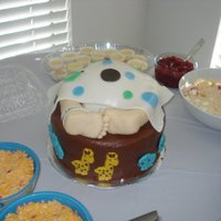 Baby Noah This is the and baby bottom cake I have done, the baby's name is Noah, and so his theme is Noah's Ark. I made the candy animals...