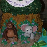 Rainforest Birthday