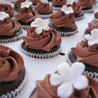 Chocolate Mini Cupcakes + Joyofbaking Choc Frosting playing with my new blossom veiner for the 1st time