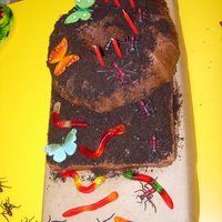 Dirt Covered Ant Hill With Worms And Butterflies The kindergardeners loved this cake covered with gummy worms and a trail of ants marching up to the ant hill. I placed a bundt cake on top...