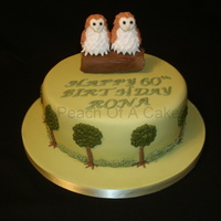 Owls I wasn't sure how to do this cake but got advise form another forum.The owls are moedlling paste and each feather was put on...