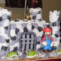Mario Cake Mario Brothers Castle cake. Cake is covered in fondant. Mario, shells and pebbles are made from sugar paste. I'm new at this. This was...