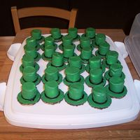 St. Patrick's Day Needed a snack for my son's class for his birthday, on St. Patrick's Day, cupcakes usually are too messy and they only eat the...