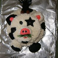 Hunters 2Nd Birthday Mooie Cow