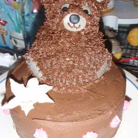 Teddy Bear Cake bc, star tip, Royal lily,