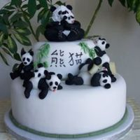 Save The Panda Another laid back group of animals enjoying their favourite treat.An ideal fund raising cake