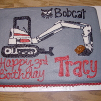 Bob Cat Cake bob cat cake for a little boy who wants to be just like his pawpaw!!