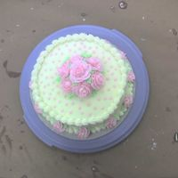 Wilton Course 1 Final   Buttercream all around!