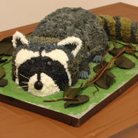 Raccoon This is a grooms cake for a raccoon hunter. The cake is red velvet with cream cheese icing in between four layers of the cake and a real...
