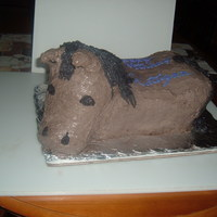 Granddaughters Birthday Cake   My granddaughter wanted a horse cake. Oreo cake shaped into a horse but the head is made out of rice krispies treats.