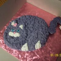 Cat Cake Without the whiskers....