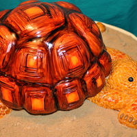 "Tortoise Cake I made this cake for a 3 years old little boy inspired on the book ""Party Animal Cakes by Lindy Smith"".The cake was Vanilla with..."