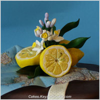 Suitcase For A Travelling Italian Foodie Cake Modeling chocolate lemons
