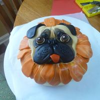 Daisy The Dog Cake D is for dog. Dis for Daisy, my grandchildren's dog. They have 2 pugs and could tell which one this is! I drew templates, cut out the...