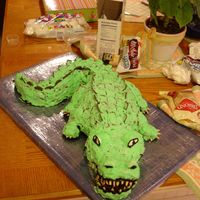 Alligator Birthday Cake This is the birthday cake I made for my granddaughter's second birthday. We are going through the alphabet and A is for alligator. I...