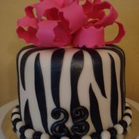 Just Another Zebra Cake... So I'm obsessed with making zebra cakes now. This was for my son's play therapist's birthday. I dusted it with luster dust,...