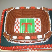 Vols Football Stadium Cake This is a Tennessee Vols football cake I made for a friends son's 7th birthday. The sheet cake is all chocolate. The stadium is white...