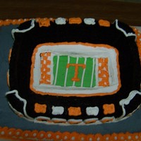 Daniel's Cake The groom's cake I made for my friends wedding. He is a HUGE Tn. fan. Chocolate cake, baked in a stadium shaped pan and placed on a...