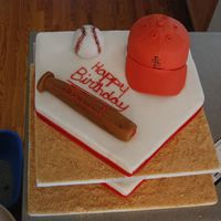 St. Louis Cardinals   Cake was made for a little boys birthday party.